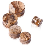 Pair Of Natural Picture Jasper Stone Saddle Plugs