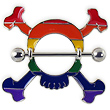 Large rainbow skull nipple shield